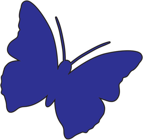 Butterfly_Blue_angled